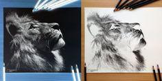 drawings - Pesquisa Google