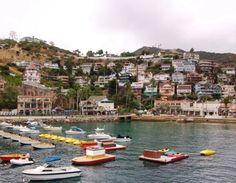 zip around Catalina Island #ridecolorfully