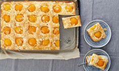 Aprikosenkuchen vom Blech Rezept   Dr. Oetker