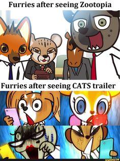 Furries after seeing Zootopia – popular memes on the site iFunny.co #fail #memes #oof #owo #furries #furrymemes #furryart #furrypride #furryfandom #relatable #uwu #cute #irl #aggretsuko #seeing #zootopia #pic Funny Internet Memes, Stupid Funny Memes, Funny Relatable Memes, Funny Images, Funny Pictures, Furry Meme, Furry Comic, Anime Furry, Furry Drawing