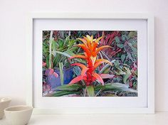 Tropical Flower Painting Digital Download Art by InekedeVries