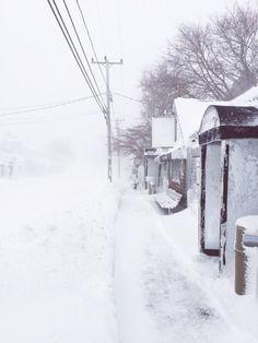 Chatham Squire Cape Cod #blizzard2015