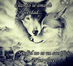 A Wolf thing Wolf Spirit, Spirit Animal, Quotes En Espanol, Wolf Quotes, Wolf Love, Wild Wolf, Don Juan, Romantic Quotes, Spanish Quotes