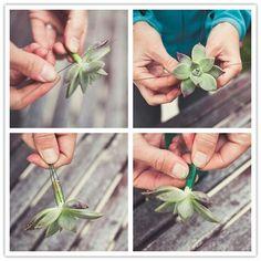 succulent boutonniere http://www.inspiredbride.net/2010/05/05/do-it-yourself-project-desert-bloom-boutonniere/