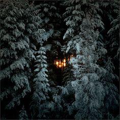 Til We See the Light