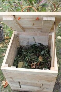Compost In Winter Herbs - -