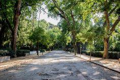 Parque de Maria Luisa. Avenida de Hernán Cortés. #Sevilla #Seville #sevillaytu @sevillaytu