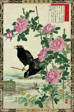 Bairei Kono Crow and Rose 1883