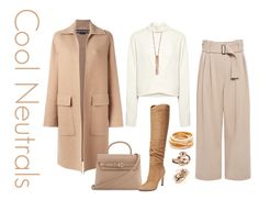 """""""Cool Neutrals #1"""" by christinemusal ❤ liked on Polyvore featuring Rochas, IRO, A.L.C., Alexander Wang, Sigerson Morrison, Kenneth Jay Lane, Clara Jasmine, LE VIAN and Mimí"""