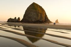 Oregon Coast Rocks