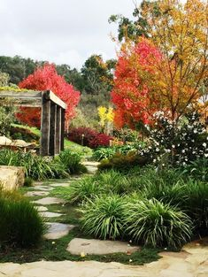 Open Gardens 17 Country | Rotary Club of Yea