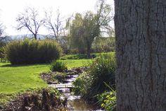 East Quantoxhead stream.