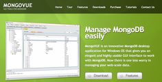 MongoVUE is a MongoDB desktop application for Windows OS that gives you an elegant and highly usable GUI interface to work with MongoDB.    http://blog.mongovue.com/