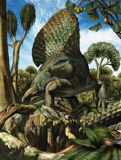 Edaphosaurus, 303-275 Ma. Davide Bonadonna