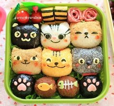 Cute Cat Rice Ball Bento Box