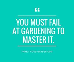 We learn the most from our mistakes. I know I've made a ton of them since I started gardening 8 years ago and I'm certainly grateful for them. Mistakes offer an invitation for learning.  That being said, I think most of us prefera littleguidance. When it comes to gardening there are a few begin