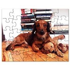 Dog and Dog Puzzle