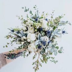 "75 Likes, 2 Comments - True Bride (@truebride) on Instagram: ""Lets start our day with some beautiful blooms shall we #FLORALFEELS  . . . . #flowers #blooms…"""