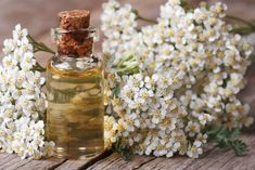 you have insects bothering you but you don't want to have to use the chemical insect repellent sprays? Yarrow tincture is a great natural insect repellent! Plus, it is easy to make yourself. Natural Home Remedies, Natural Healing, Herbal Remedies, Health Remedies, Natural Oil, Cold Remedies, Holistic Healing, Bloating Remedies, Herbal Tinctures