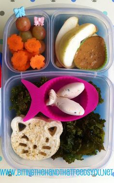 Biting The Hand That Feeds You: Soft Kitty Goes Vegan! Bento!