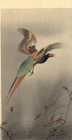 Pheasant in Flight - Ohara Koson  1910
