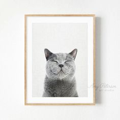 Cat Smiling Art Print Smiling Cat Wall Art by Amy Peterson