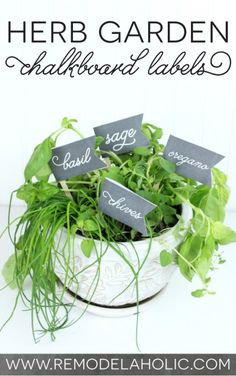 Cute and easy! Herb