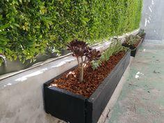 Pallets, Ideas, Wood Planters, Window Boxes, Succulents, Plants, Thoughts, Pallet, Wood Pallets