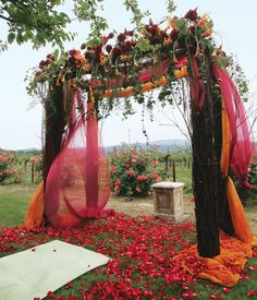 fall wedding ceremony decor  Obviously we can't do this but the colored fabric is pretty. Maybe along the isle tied around shepherd hooks