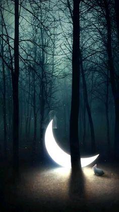 Mis ediciones La luna