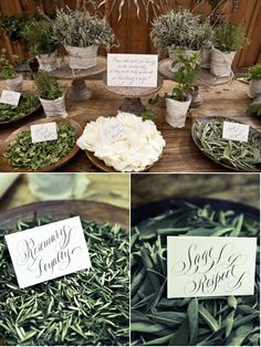 Herbs for a tossing table? With meanings behind each word! LOVE!