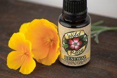 RENEWAL  Nourishing Facial Serum  with Rosehip by WildRoseHerbs