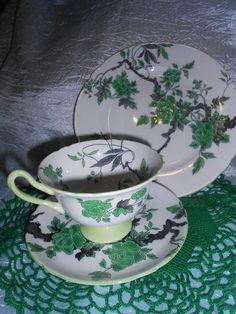 Vintage SHELLY England, RARE, Fine Bone China Trio, Cup, Saucer & Plate
