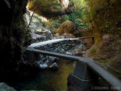 秋の中津渓谷 (Nakatsu Gorge in autumn) #Japan #District