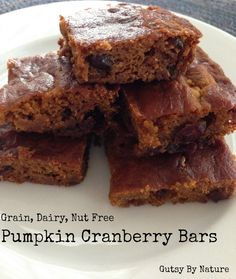 Pumpkin Cranberry Bars (Grain Free, Dairy Free, Nut Free)