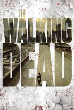 The Walking Dead Streets TV Poster Print