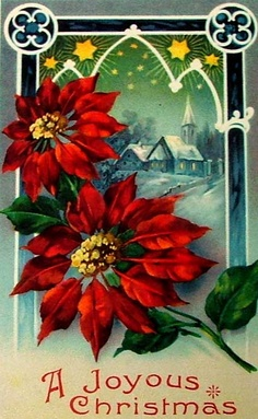 vintage Christmas postcard  ALL OVER POINSETTIAS ONLY
