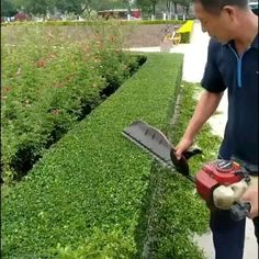 Gardening Supplies, Ideas Para Decorar Jardines, Grass Cutter, Cool Gadgets To Buy, Oddly Satisfying Videos, Diy Projects For Beginners, Diy Chicken Coop, Real Plants, Cool Inventions