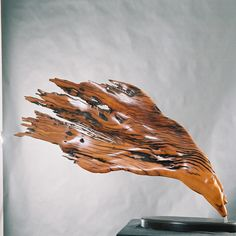 2004 Burning Wind x x Wooden Sculptures, Gallery, Roof Rack