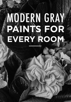 Luxury Colors that Go with Gray and Black
