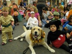 therapy dog at Halloween