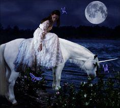 Dreaming of unicorns
