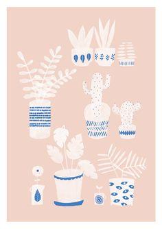 Pots & plants illustration