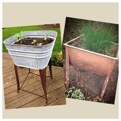 Love the idea of using vintage wash tubs for container gardening. Find these at flea markets and get your herbs and veggies going!