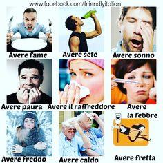 Expressions with the verb AVERE #friendlyitalian #italiano #italian…