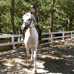 @laura.valle.ambrata e  @nicovannu  #horse #love #toscana #cavallo #summer