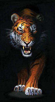 Wild Animal Wallpaper, Tiger Wallpaper, Wallpaper Jungle, Art Tigre, Tiger Artwork, Tiger Painting, Tiger Pictures, Tiger Images, Tiger Drawing