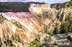 Colorful Grand Canyon of Yellowstone by Debra Martz Photography