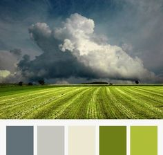 The spring theme colour palette - rich greys and airy greens Room Colors, House Colors, Paint Colors, Boys Bedroom Colour Scheme, Grey Living Room Ideas Color Schemes, Kitchen Colour Schemes, Colour Pallette, Color Combos, Colour Schemes Grey