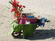#LaPlaya Carreta, Manuel Antonio  www.ogunquitbeachinn.com Quepos, Wheelbarrow, Beach